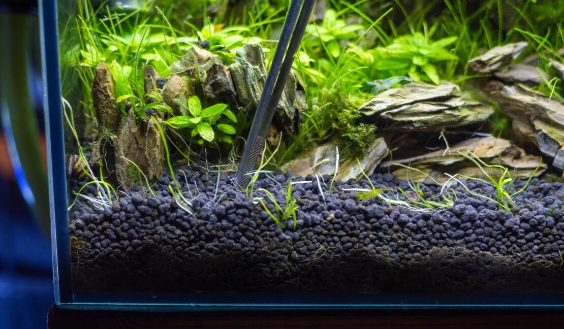 Soil als Aquarium Bodengrund