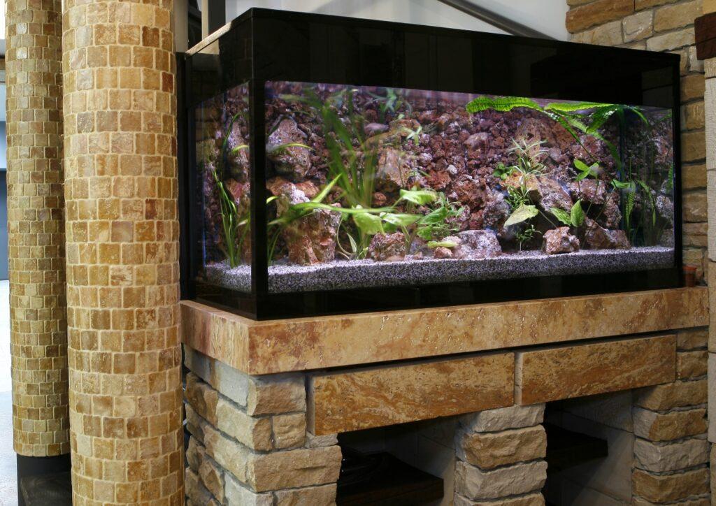 Großes Aquarium mit Fischen